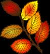 AutumnleavesSmall