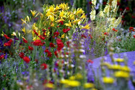 GardeningClubMay2015