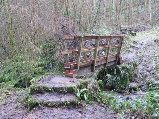 manor-wood-footbridge2